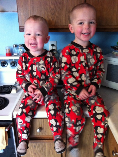 My monkeys - Noah is on the left and Eli is on the right.
