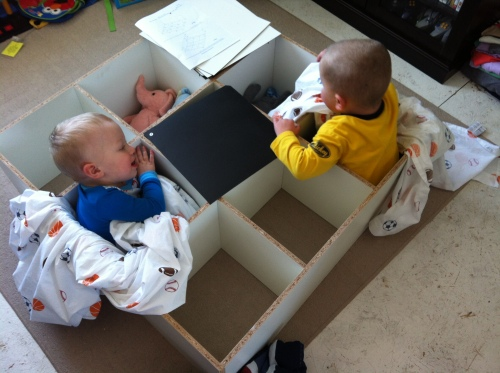 We had excellent helpers. They made good use of their new book shelf...by sitting in it.